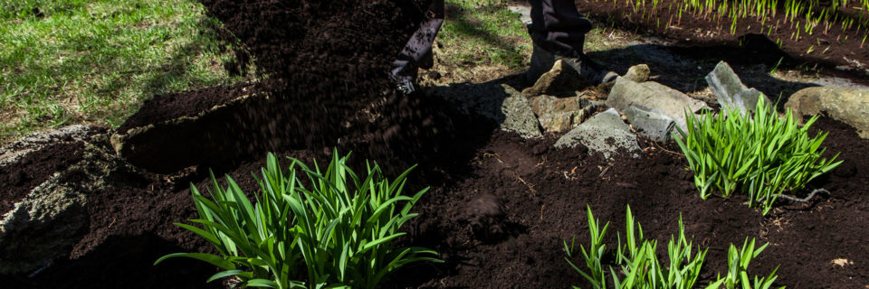 Freshen Your Landscape With Fresh Mulch
